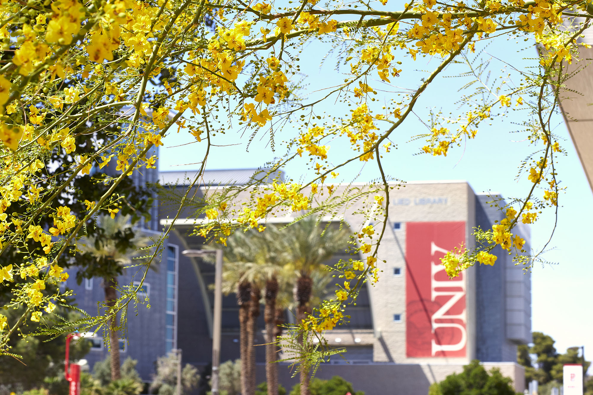 www.unlv.edu: From the President: Asian, Pacific Islander, and Middle Eastern Heritage Month