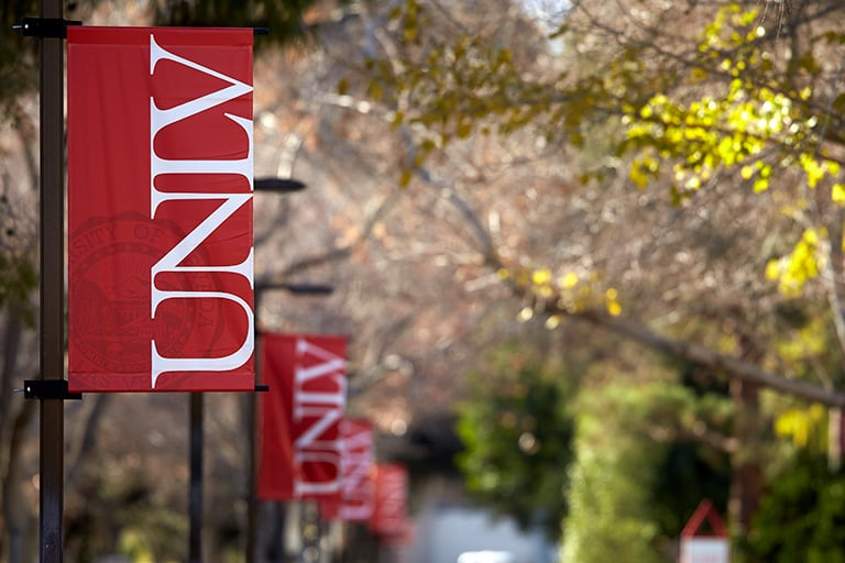 A row of UNLV red banners following the path throughout campus.