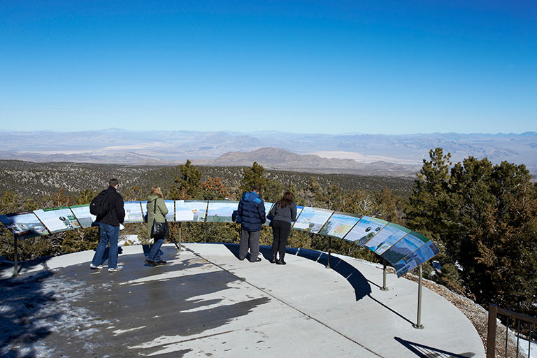 Four people at an overlook in Mount Charleston, looking out at a the landscape of trees and mountains.