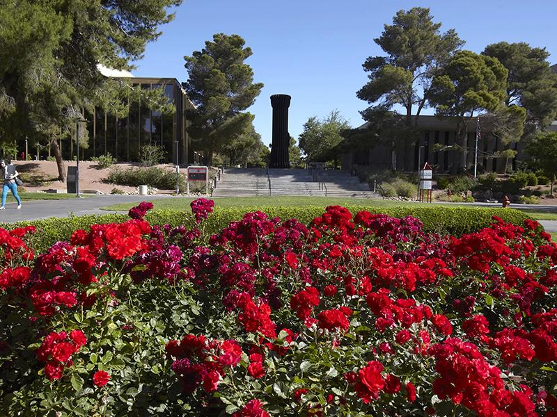 Lee Pascal Rose Garden