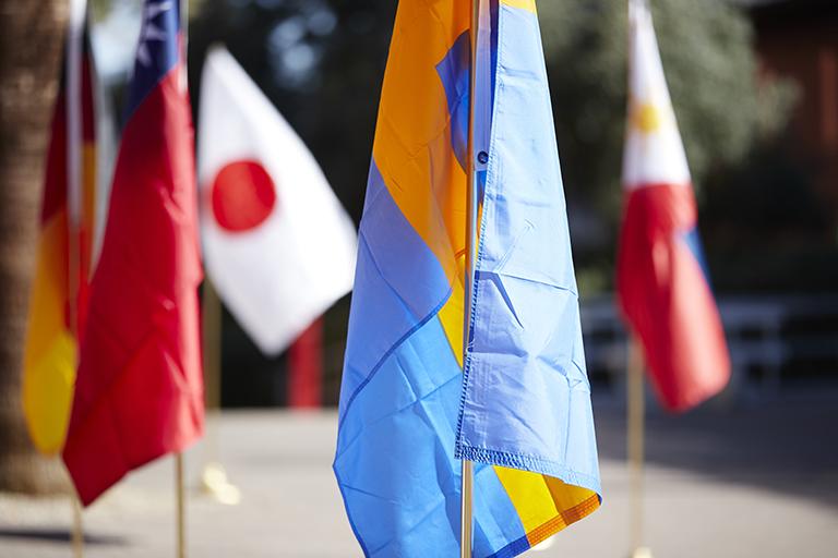 Various international flags