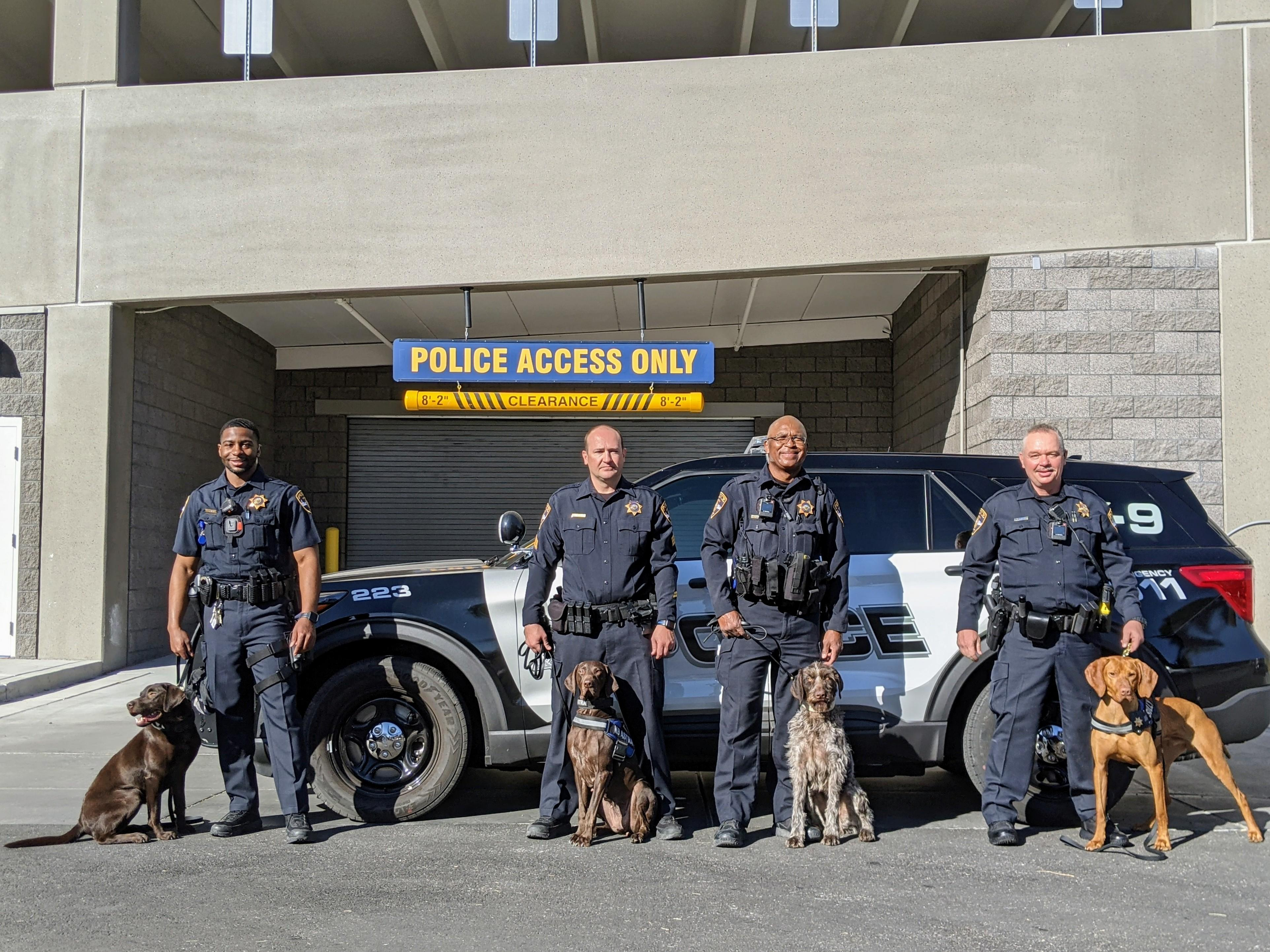 Police men and police dogs standing infront of a police car