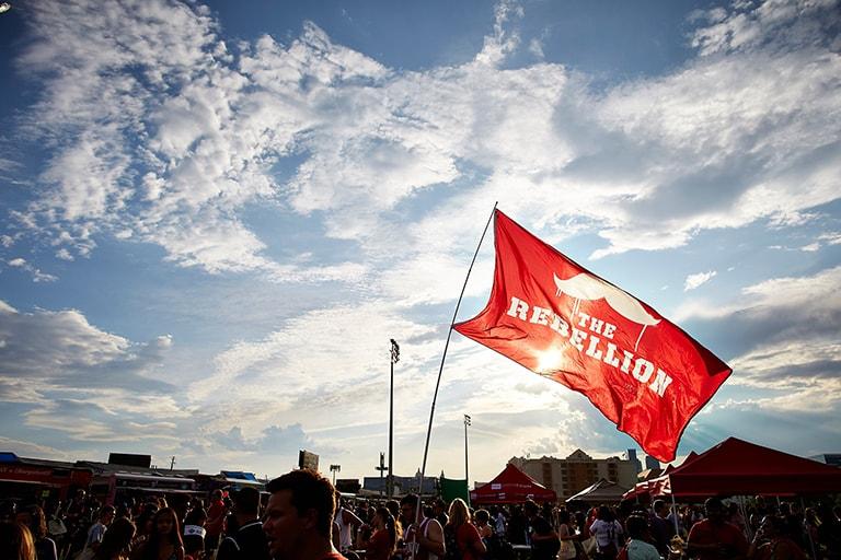 """""""The Rebellion"""" flag"""