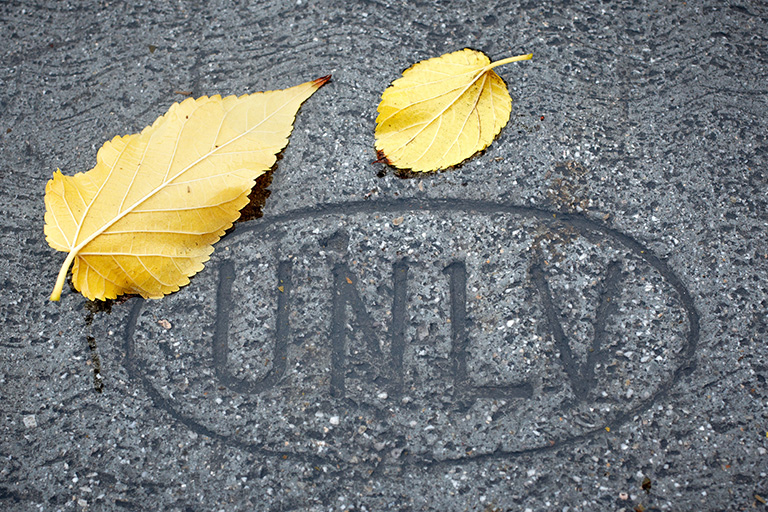 Cement with U-N-L-V carved in it and two yellow leaves