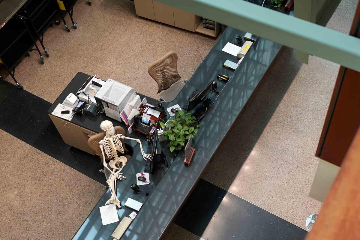 A skeleton kicks up its feet on a desk