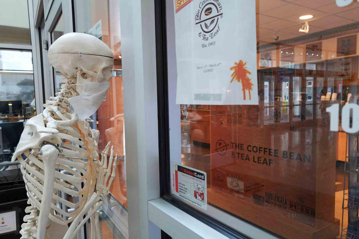 A skeleton looks inside a coffee shop
