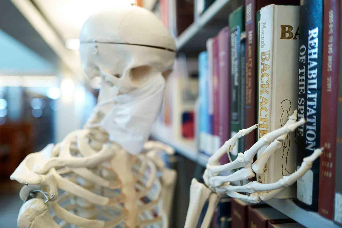 A skeleton pulls a book off the shelf