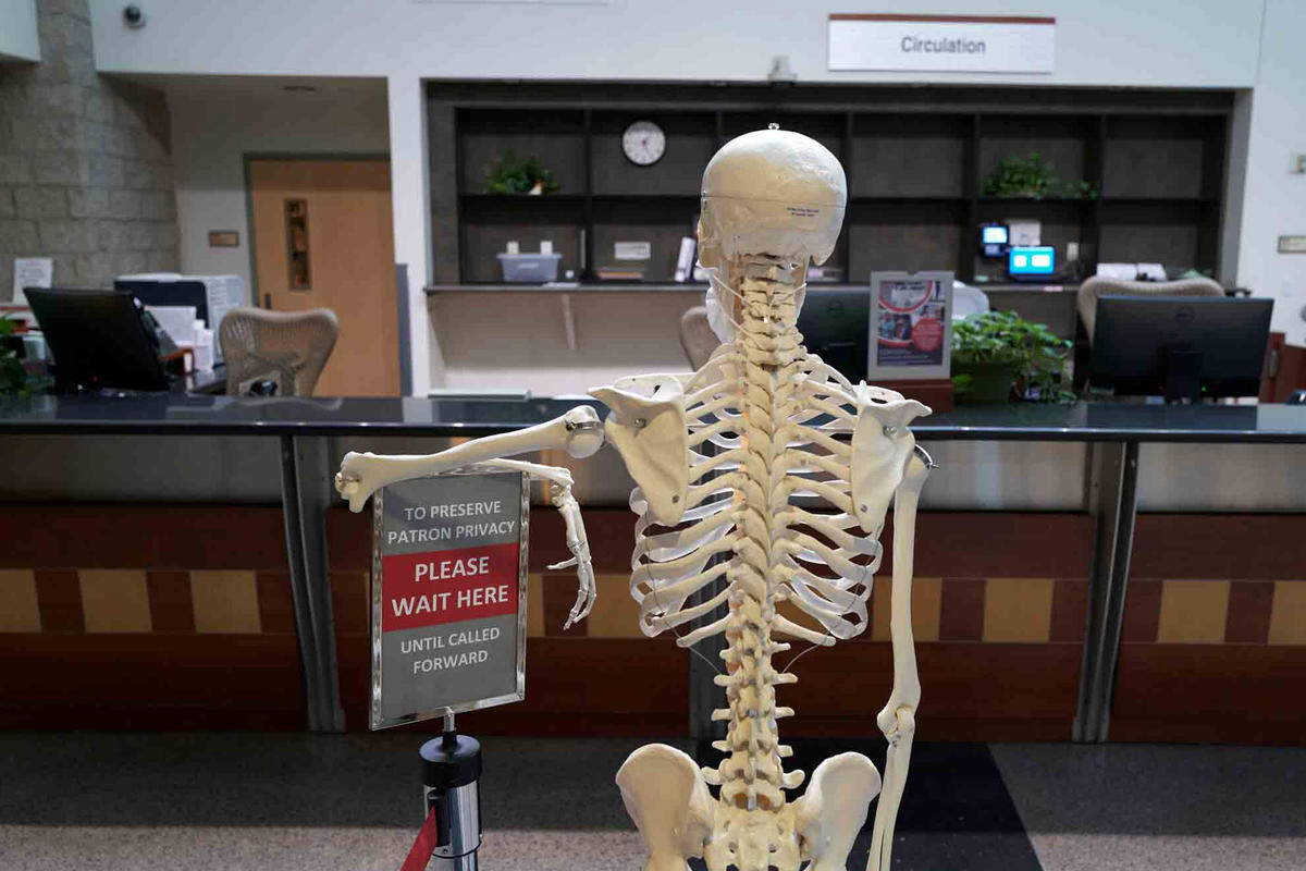 A skeleton leans an elbow on a sign