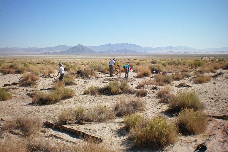 Mojave Delta Site