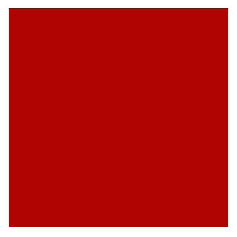Nurse Camp Logo