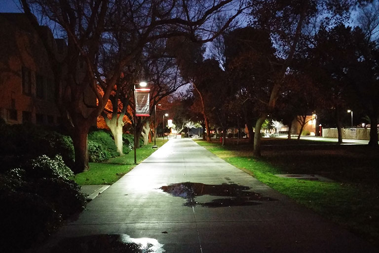 Late-Night Campus
