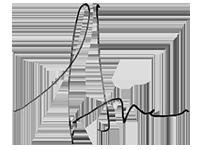 Stowe Shoemaker's signature