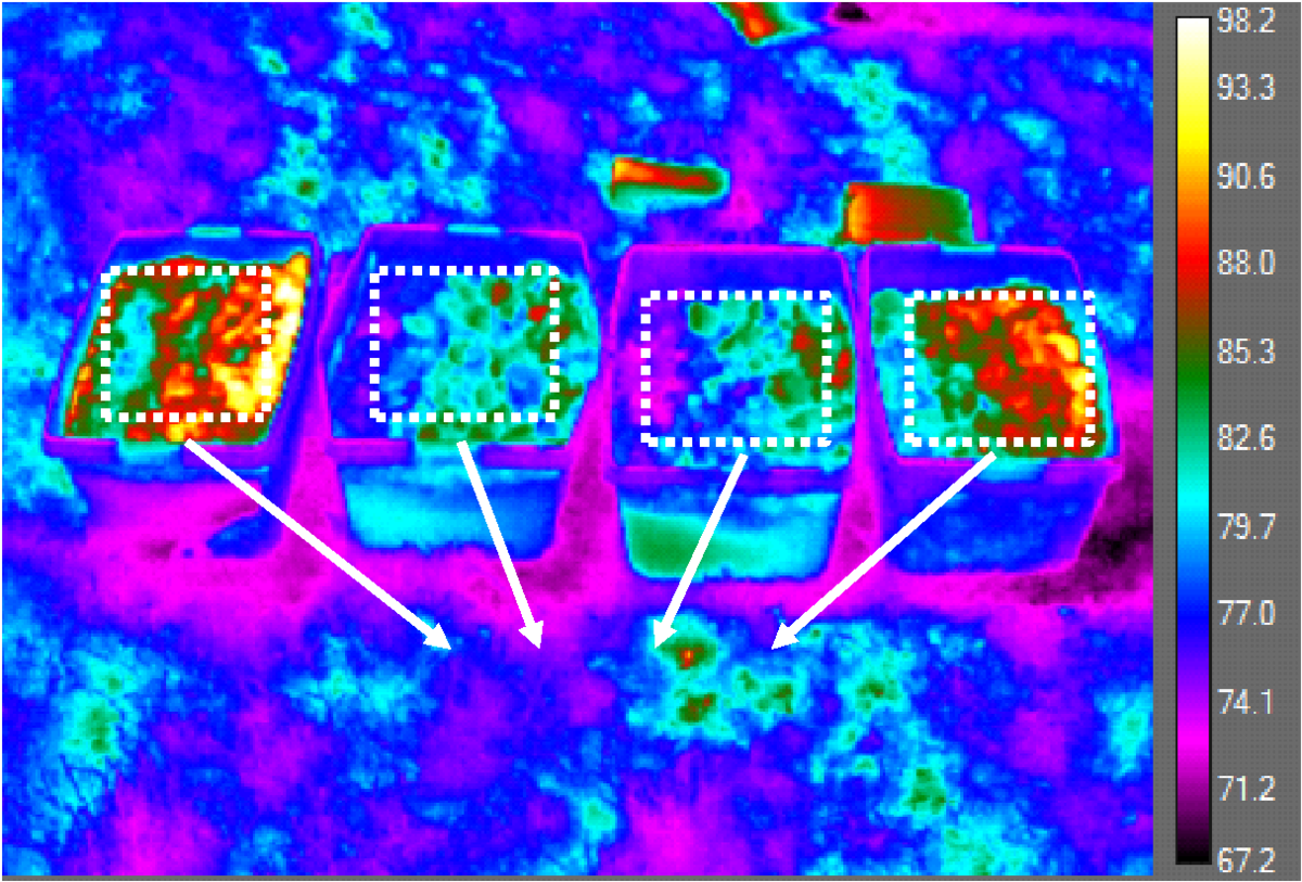 Infrared Image of Ballasts Samples during Outdoor Testing