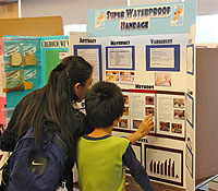 Elementary Science Fair Board