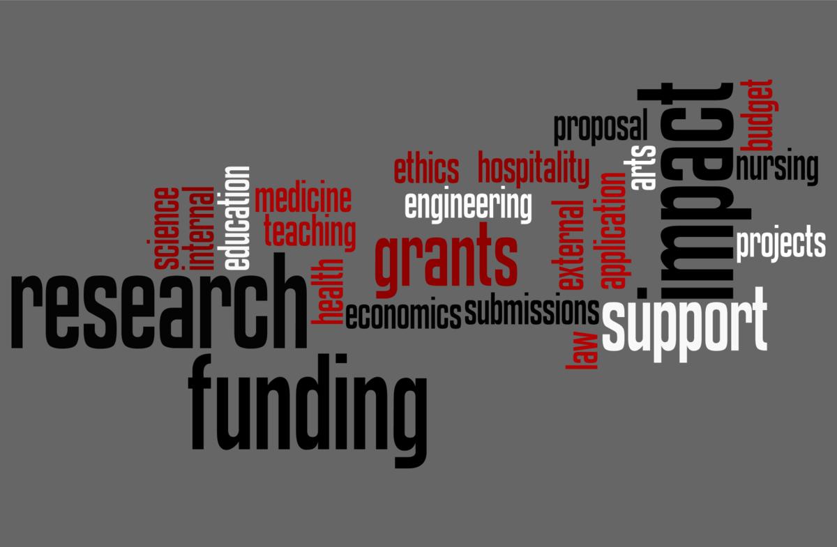 External funding word cloud