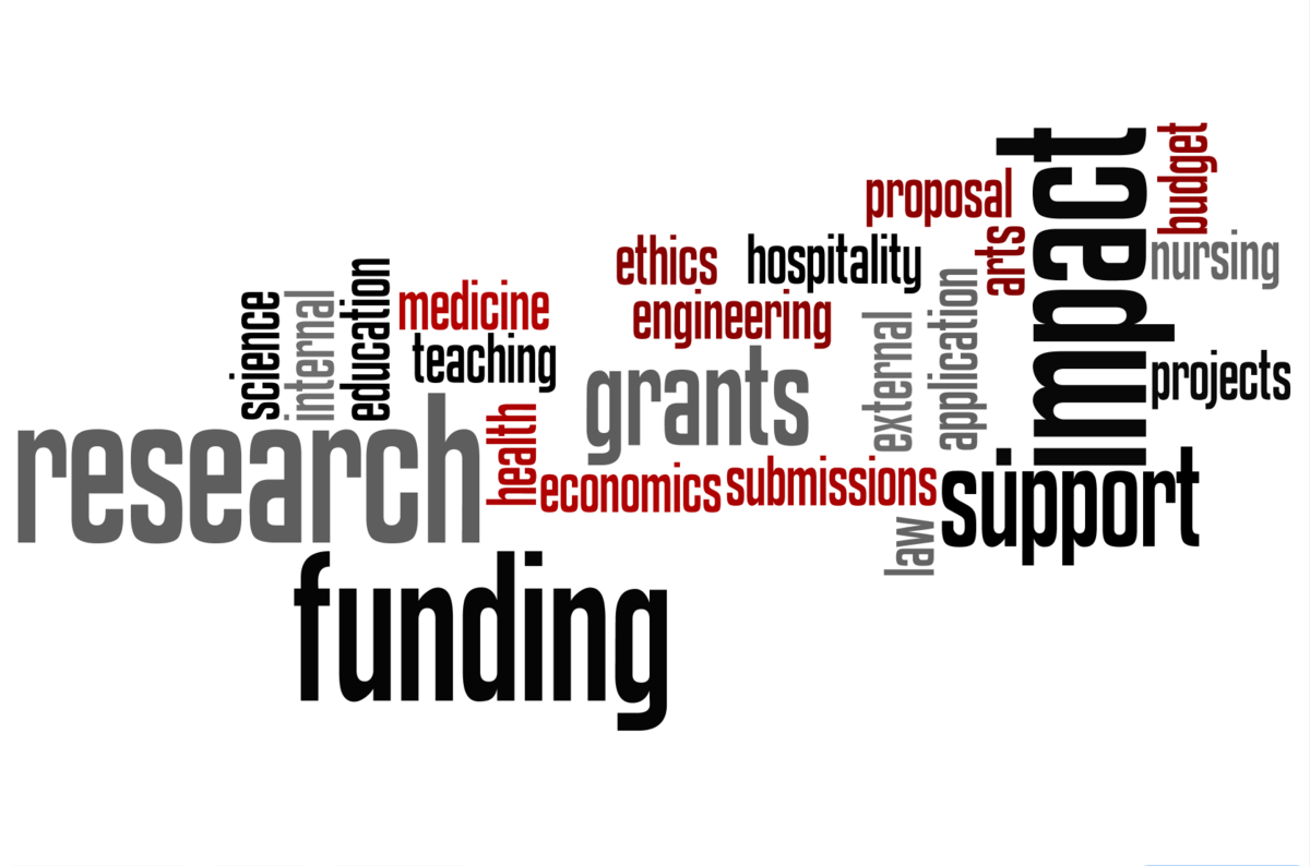 External funding word cloud