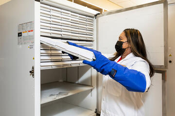 A woman places a tray inside a research freezer