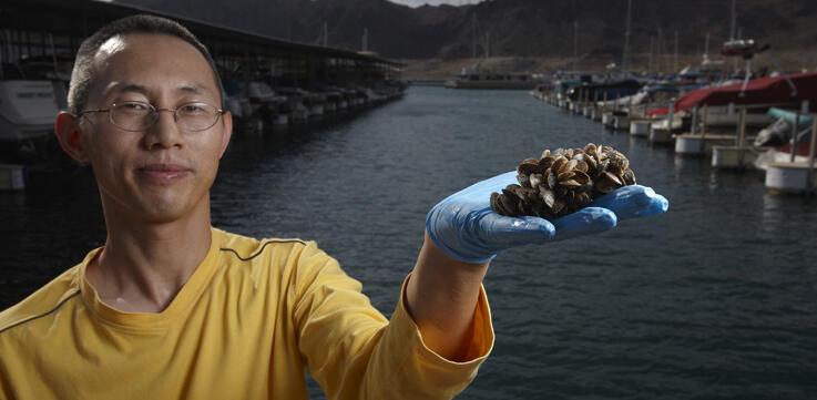David Wong holding quagga mussels