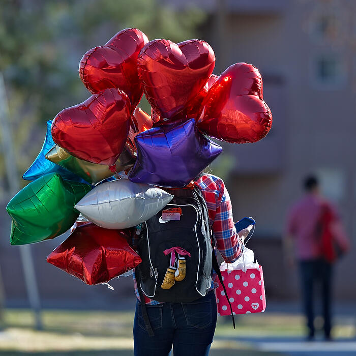 A student walks back to the dorms with her gifts in tow.