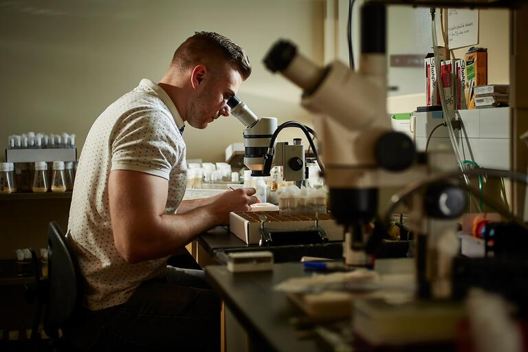 Vlad Zhitny, Biology major, looks into a microscope in a laboratory.