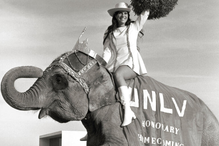 A woman in a white dress and white boots rides an elephant festooned with a tiara and UNLV-emblazoned blanket.
