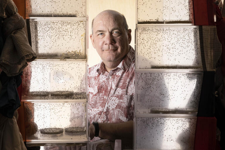 man surrounded by clear cases containing fruit flies