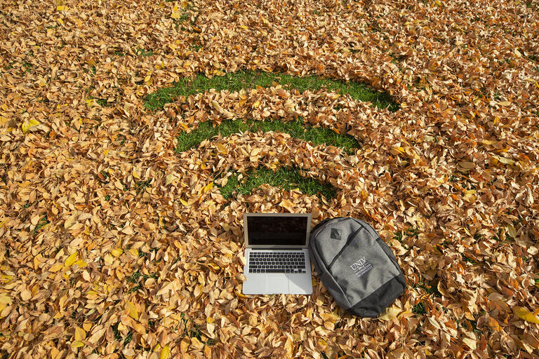 backpack and laptop on lawn filled with leaves forming wifi symbol