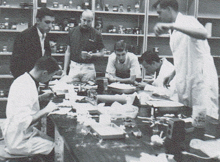 A group of students work in a lab.