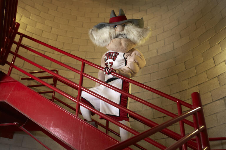Mascot in stairwell