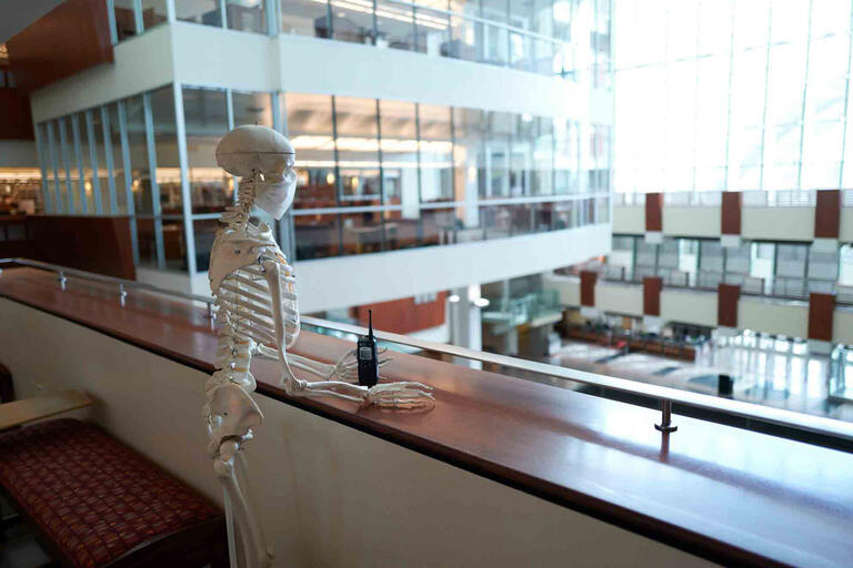 A skeleton stands at a balcony looking out over the library