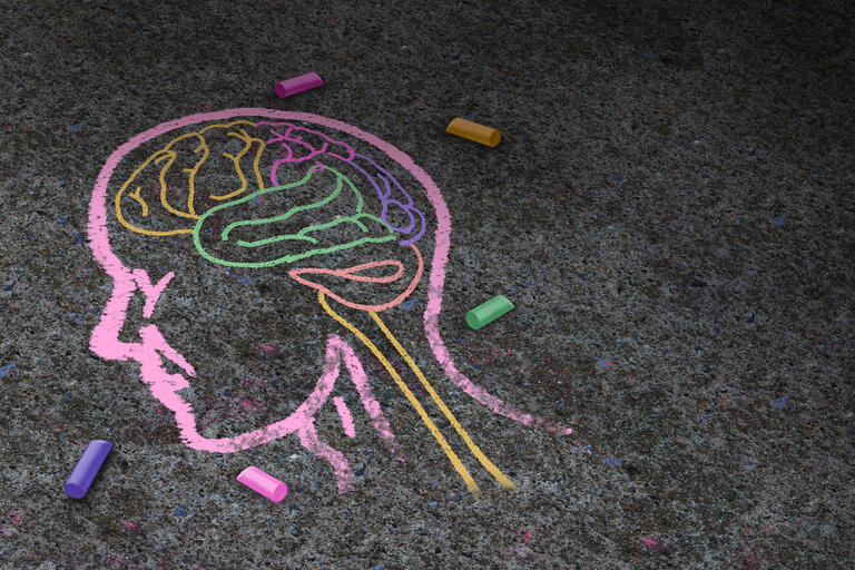 A chalk drawing of a brain