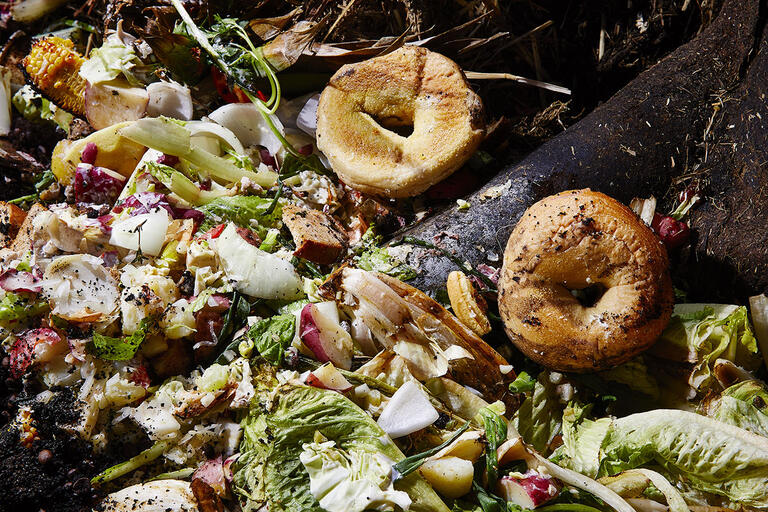 composter with food waste