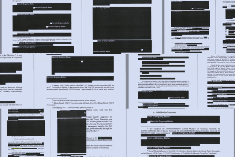 series of pages with redacted passages