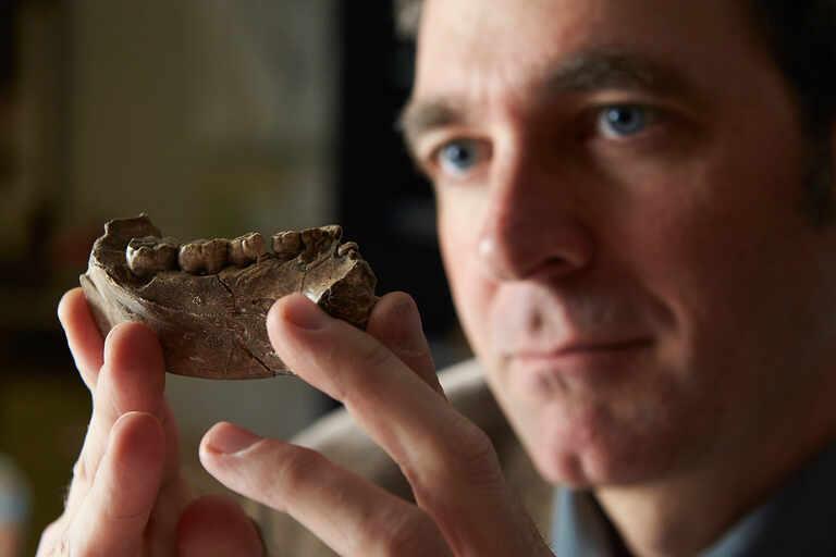 Brian Villmoare examines jawbone