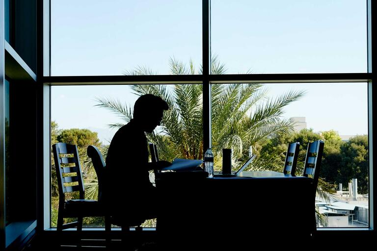 A silhouette of a student studying at a desk in front of a window with a palm tree in the background.