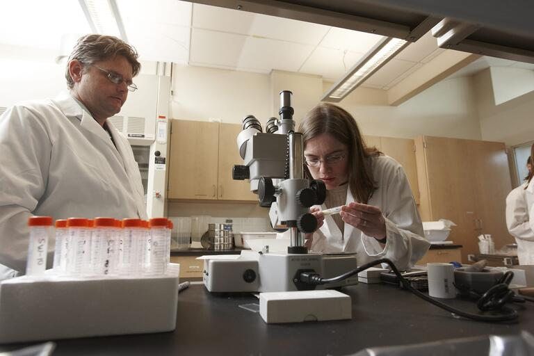 UNLV Researcher Libby Hausrath works with students in her SEB lab