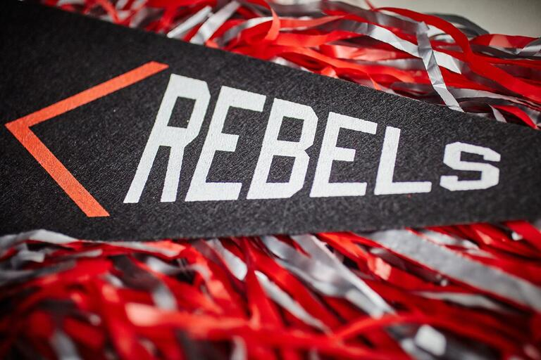 Rebels pennant and pom poms