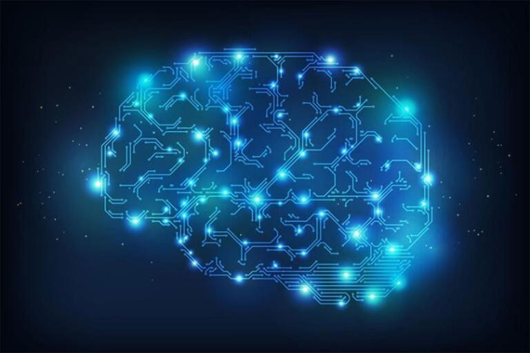 Digital image of brain