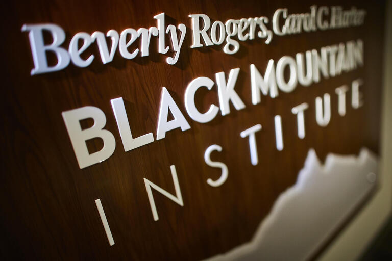 Black Mountain Institute