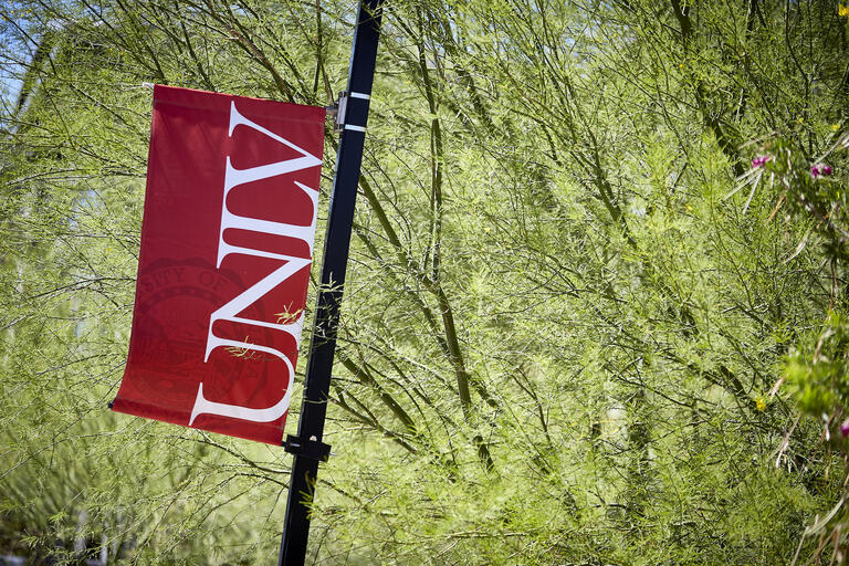 UNLV pole banner with tree in background