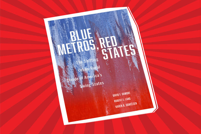 Blue Metros, Red States book cover
