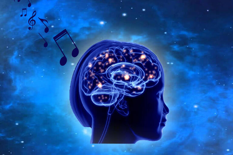 illustration of brain with music notes