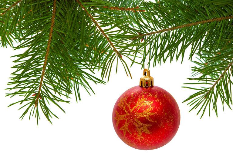 Christmas tree bulb