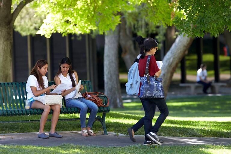 Students sitting on a bench outside studying.