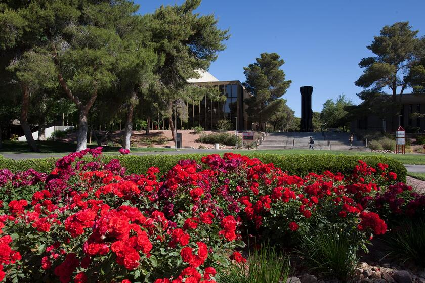Lee Pascal Memorial Rose Garden Maps Parking University Of. Green Guru  Landscaping Las Vegas ...